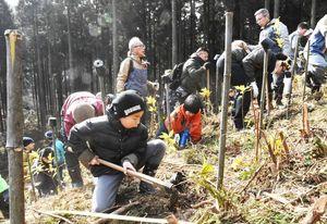 曳山を未来に引き継ぐために植樹する曳き子たち=唐津市七山藤川